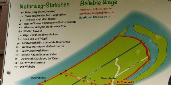 Wege auf der Ketscher Rheininsel