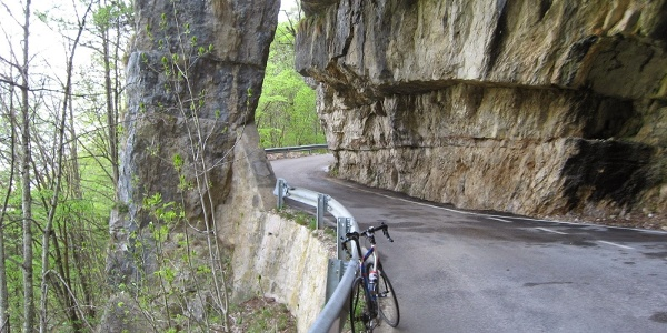 Strada da Selva a Marcesina