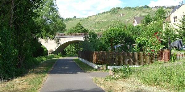Radweg bei Maring