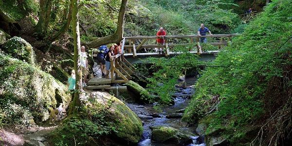 'Ehrbachklamm - Brücke am Apothekerfelsen