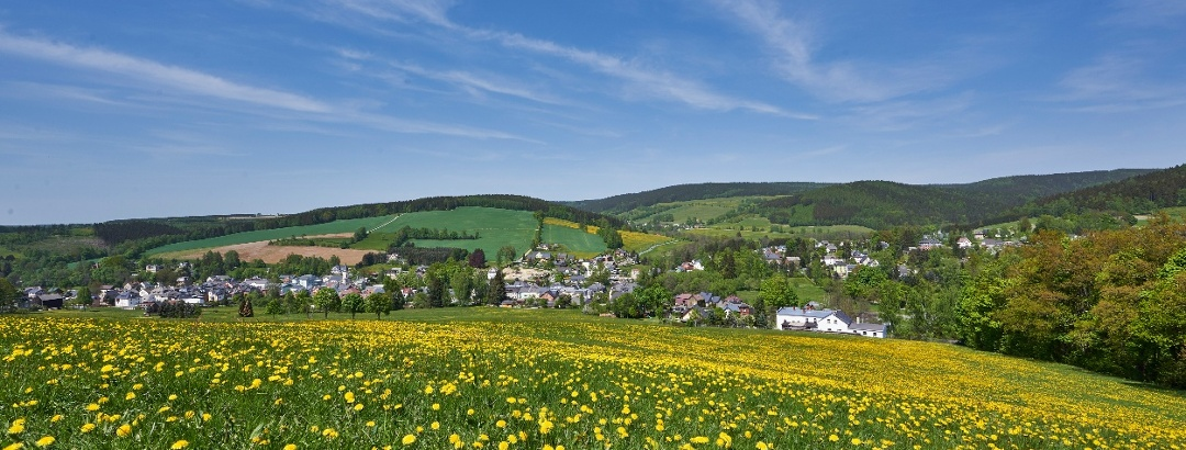 Sommerwiese mit Blick auf Erlbach