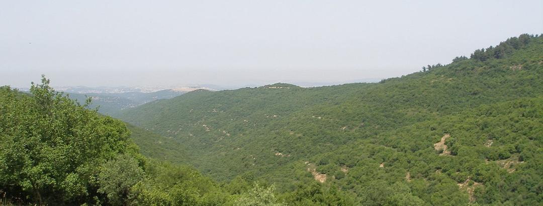 נופי הגליל העליון