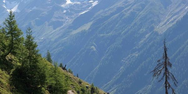 Lötschentaler Höhenweg