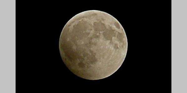 Langlauf im Mondschein