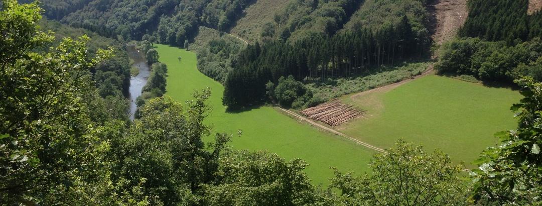 Ausblick Königslay