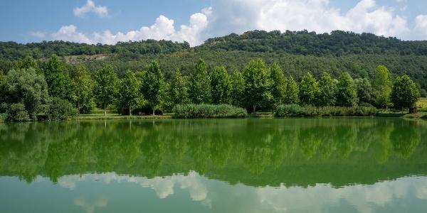 Horgásztó Várgesztes határában (szemben a Zsigmond-kő)