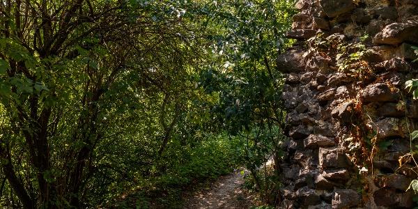 Hradné múry hradu Tátika