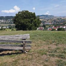 Ausblick vom Wolfenbuck