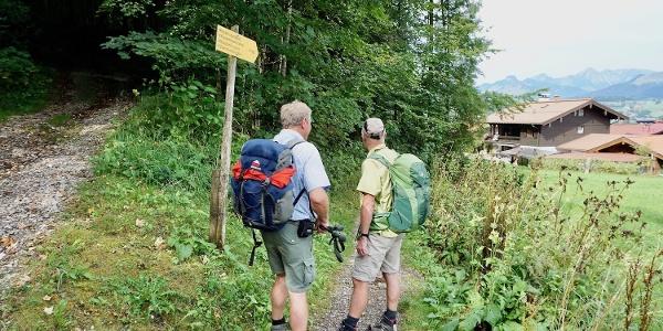 Verbindungsweg zum Wanderweg zur Zwerchen- und Klausenbergalm