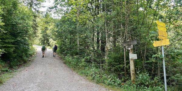 Weg zur Zwerchen- und Klausenbergalm