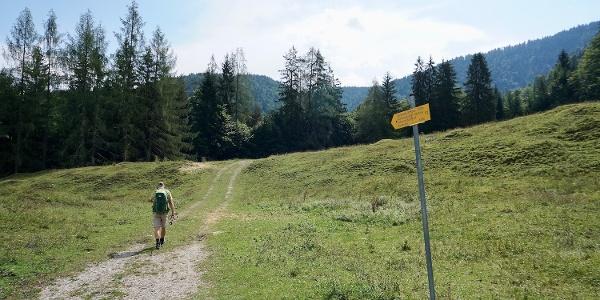 Weiterweg ab der Zwerchenbergalm