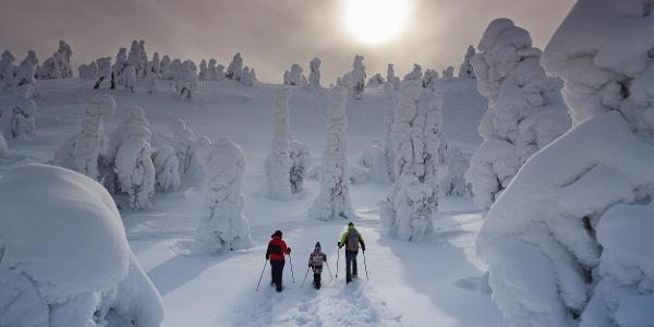 Juhannuskallio snowshoe trail in Ruka, Kuusamo • Snowshoe walking ...