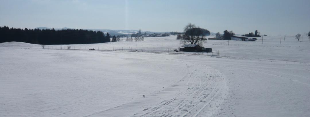 Winterlandschaft an der Loipe Reicholzried (1)