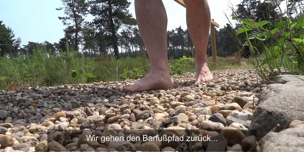 Wacholderhain Merzen mit Barfuß- und Erlebnispfad