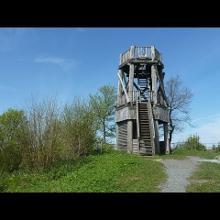 Der Eifelsteig: 10. Etappe, Gerolstein - Daun