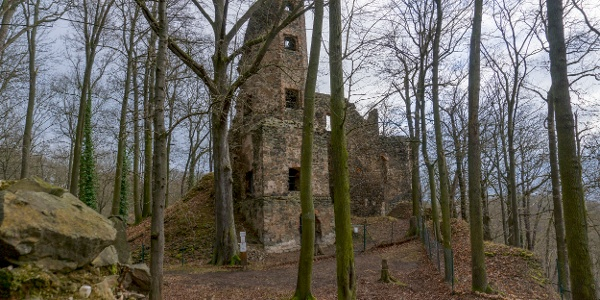 Burgruine Liebau