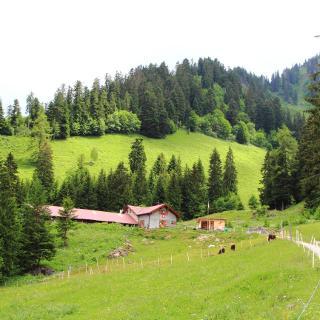 Alpage d'Eusin