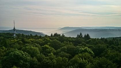 Blick vom Schwarzenbergturm über den Saarkohlewald