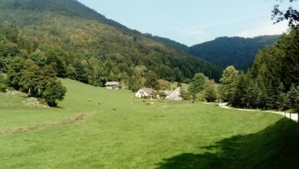 Bauernhof im Weidengraben