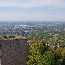 Burgblick ins Rheintal
