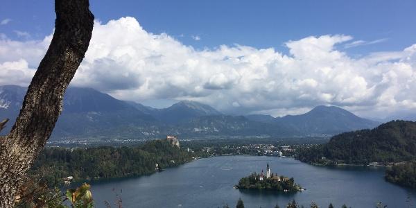הנוף מנקודת התצפית OJSTRICA