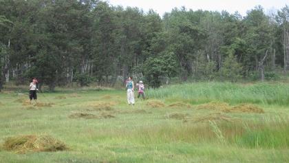 Freiwilligenarbeit ist sehr beliebt im Archipelago Nationalpark.