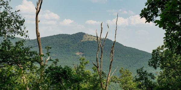 Kibukkan a Sós-hegy