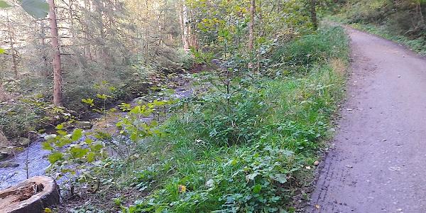 Im Perlbachtal Richtung Neukirchen