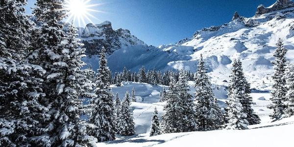 Winterlandschaft Gauertal
