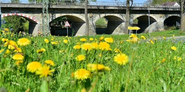 Eisenbahnbrücke im Dorfteich von Grobau