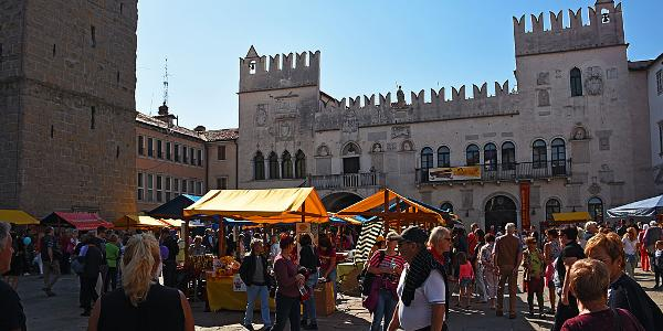 Koper main square