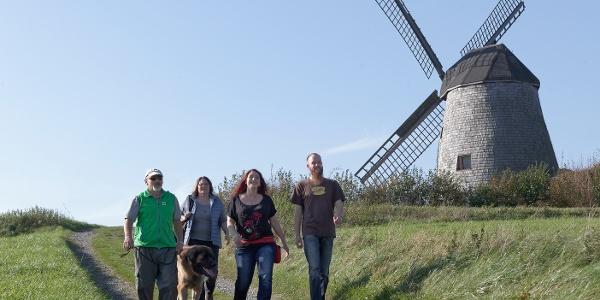 Windmühle Bavenhausen
