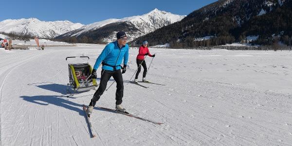 Cross-country skiing enjoyment - towards the sun