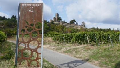 Die schönste Weinsicht des Weinanbaugebiets Pfalz 2016