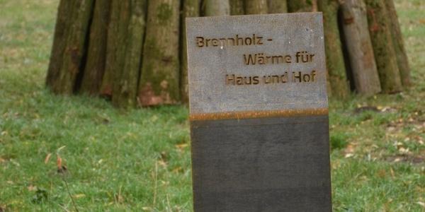 Station zum Thema Brennholz