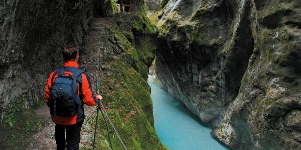 Tolminka gorge