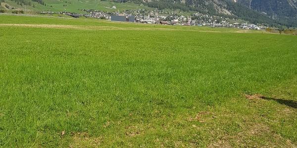 Ausblick über die Talsohle nach Samaden