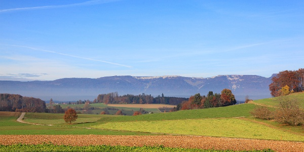 Fernsicht vom Bucheggberg auf die 1. Jurakette.