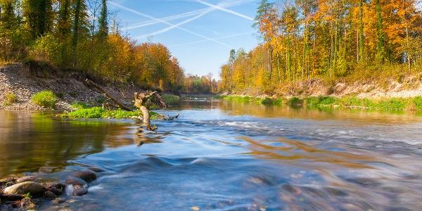 Auenschutzpark Rupperswil