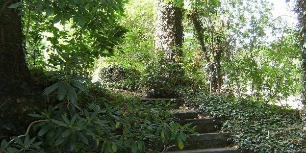 Weg zur Gartenlaube