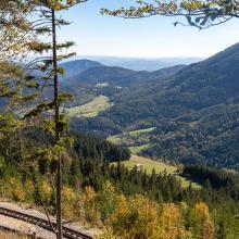 View from Zahnradbahnwanderweg