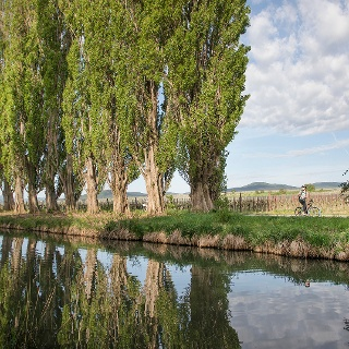 Thermenradweg - Wiener Neustädter Kanal