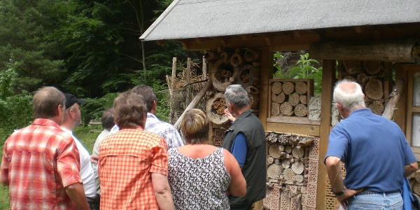 Insektenhotel im Naturschutzgebiet Tiergarten