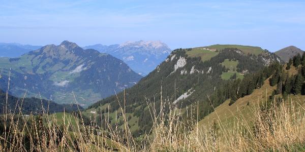 Blick Richtung Musenalp