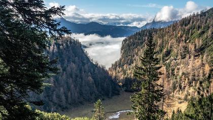 Blick auf den Arzerboden  im nebel gehts nach Eisenerz