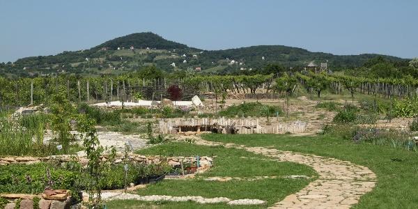 Zánka, Gyógynövény-völgy Látogató- és Oktatóközpont