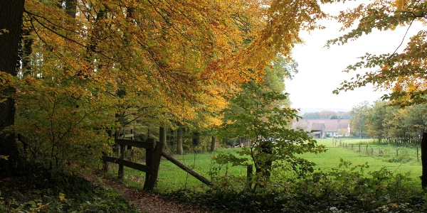 Auch im Herbst ist der Freeden ein Erlebnis
