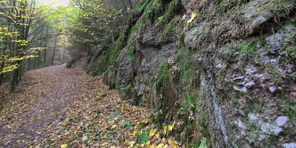 Moosbewachsene Felsen in der Ludwigsklamm bei Eisenach
