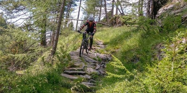 Schöne technische Passagen fordern den Biker