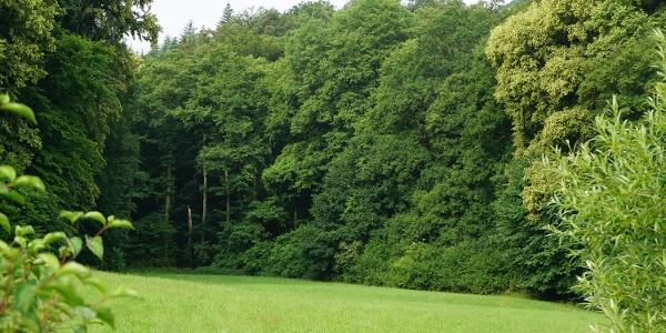 Trekkingplatz Hainach